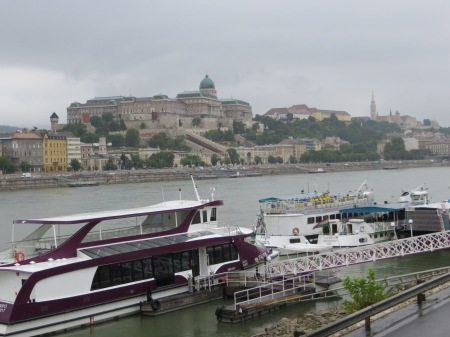 My photo of the Danube and castle