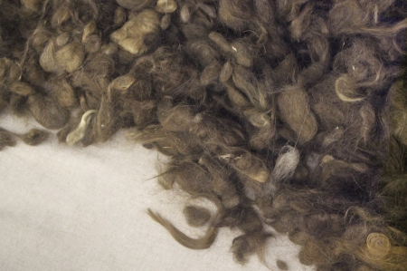 Hair from Auschwitz display case / Photo by Ilana DeBare
