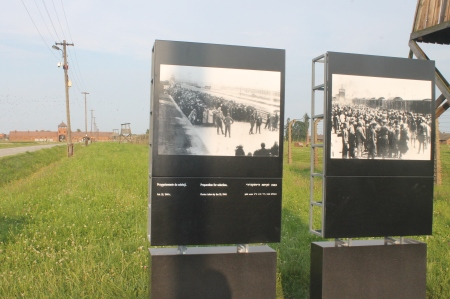Displays showing the selections by the railroad track / Photo by Ilana DeBare
