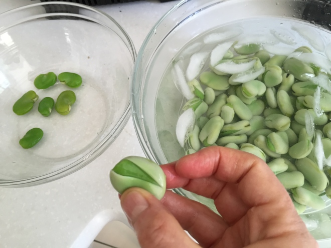 Removing the bean from its hull / Photo by Ilana DeBare